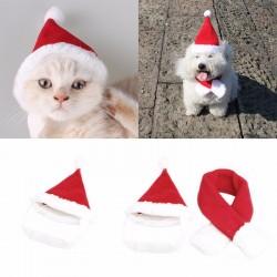 Kerstmuts voor de hond of kat