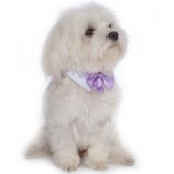 Luxe roze of lila dasstrik voor honden