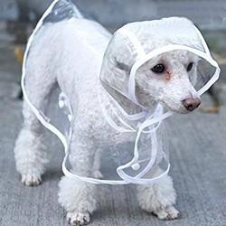 Doorzichtige honden regenjas met handige sluiting