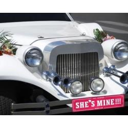 Kartonnen nummerbord She's of He's Mine