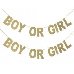 Goud glitter letter banner Boy or Girl