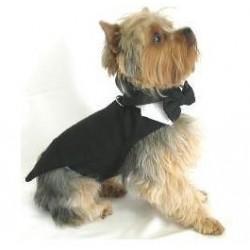 Mini honden tuxedo met zwart strikje