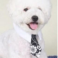 Feestelijke zwart witte honden stropdas in 2 maten