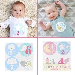 Baby en zwangerschap Milestone stickers Baby Stuff Roze of Blauw