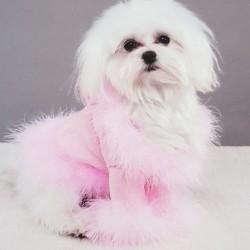 Roze, witte of zwarte honden outfit Diva met nep veren kraag