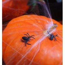 Pakje met 10 plastic zwarte spinnen