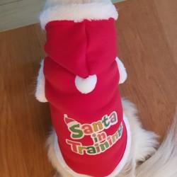 Kerstpakje Santa in Training
