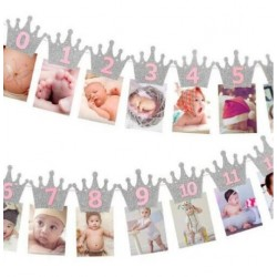 Milestone foto banner zilveren kroontjes met roze letters