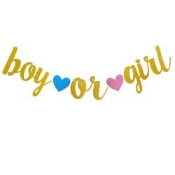 Banner Boy or Girl glitter