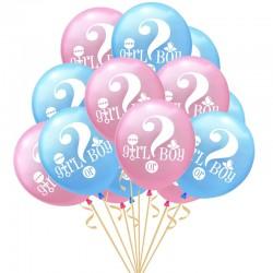 Boy or Girl ballonnen