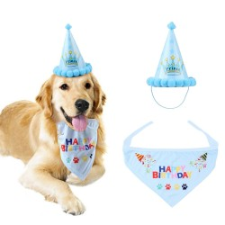 Honden verjaardags set blauw