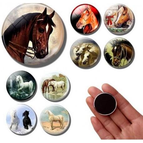 Koelkast magneten met een foto, afbeelding of tekst van je eigen paard