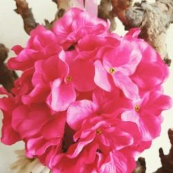 Pommander met een doorsnede van ca. 20 cm donker roze