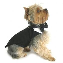 Luxe en heerlijk draagbaar honden jacquet zwart voor de allerkleinsten