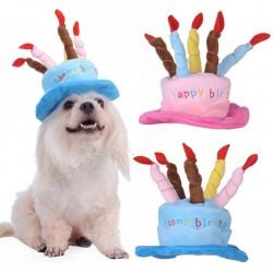 Verjaardagshoed voor de hond blauw