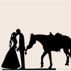 Bruidspaar met paard taart topper