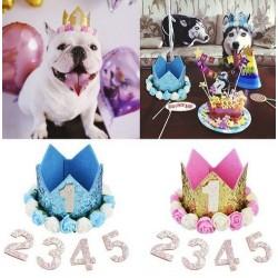 Goud glitter hoedje met witte en roze bloemen voor de eerste verjaardag van de hond