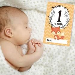 Baby Milestone fotoprop kaarten Today I Am...