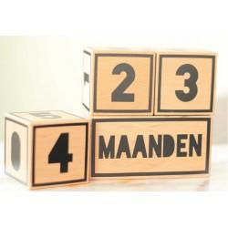 Houten Mijlpaal Blokken Set 4-delig