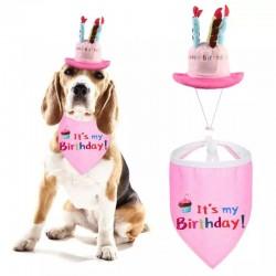 2 delige verjaardagset met hoed en bandana voor de hond roze
