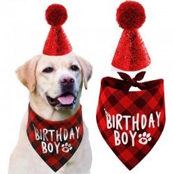 2-delige Honden verjaardags set Birthday Boy rood