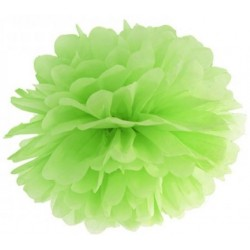 Pompoms 25 of 35 cm appel groen