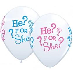 He or She ballonnen