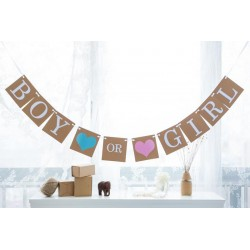 Retro banner Boy or Girl