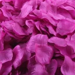Aantrekkelijk geprijsd pak met 1000 rozenblaadjes lila