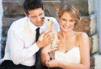 Huisdieren op je huwelijksdag: wel of geen goed idee?